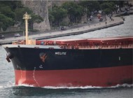Diana Shipping bulker grounded off Indonesia