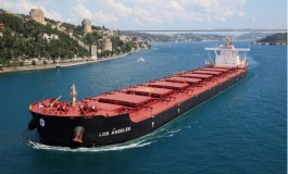 Diana Shipping seals two more charters