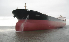 Diana Shipping timecharter extension shows improvement in panamax market