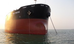 Diana Shipping cape charter extended