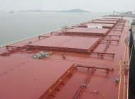 Diana Shipping post-panamax fixed to Uniper