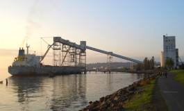 Illinois River grain terminals resume as force majeure ruling is lifted