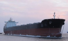 Grand China Logistics cape fleet up for sale
