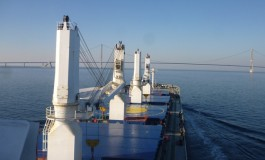 Guangdong Renke Shipping to offload bulker fleet