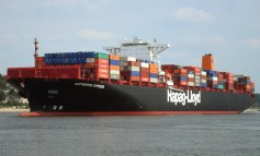 THE Alliance formed by Hanjin, Hapag-Lloyd, K Line, MOL, NYK and Yang Ming