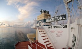 Klaveness orders three combination carriers, ditches kamsarmax