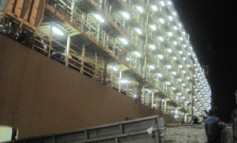 Live Animal Export: Australian horse transportation by sea for slaughter
