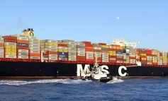 MSC takes vintage Claus Peter Offen boxship for just $4.3m