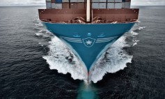 Container consolidation is not over: Maersk's Skou