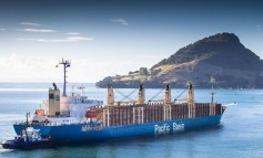 Pacific Basin adds third ship this year