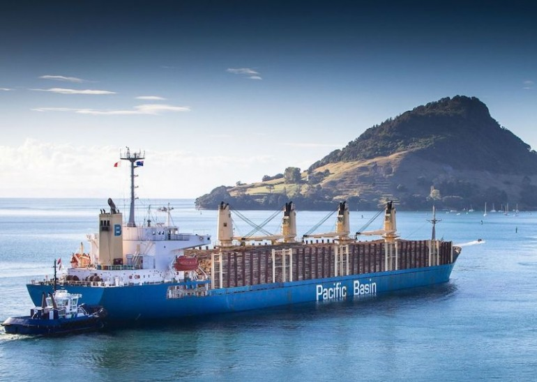 Pacific Basin adds another Japanese handy