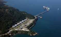 Petrobras weighing up offers for its fuel distribution arm