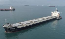 Star Bulk launches dry bulk commodities logistics venture
