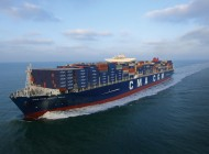 Cellular fleet hits 21m teu
