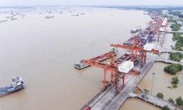 Two Yangtze River shipping alliances established