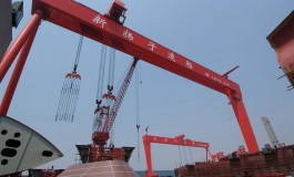 Worker dies after crane collapses at Yangzijiang yard