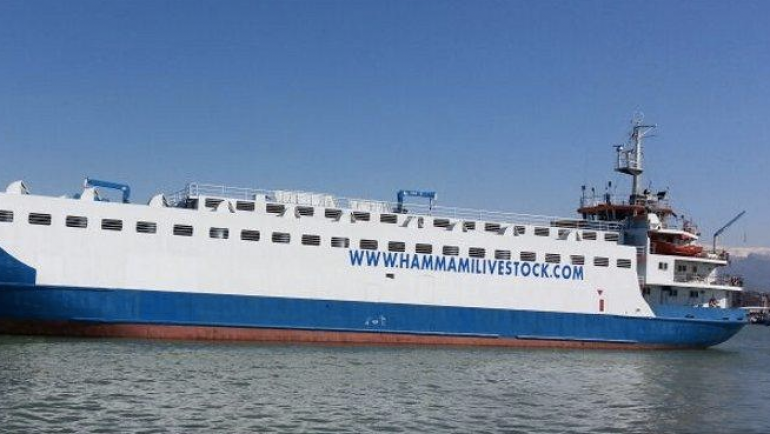 Livestock carrier collides with Russian navy ship off Turkey